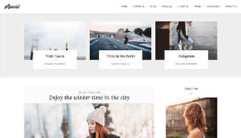 Anariel Theme WordPress Free