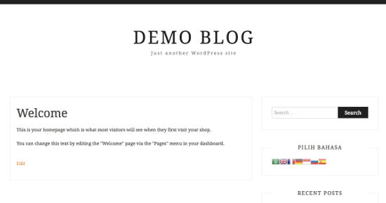 Demo GTranslate WordPress