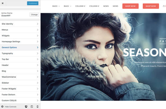OceanWP Themes Customize