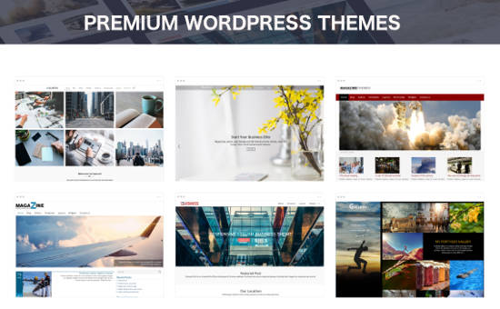10web Premium WordPress Themes