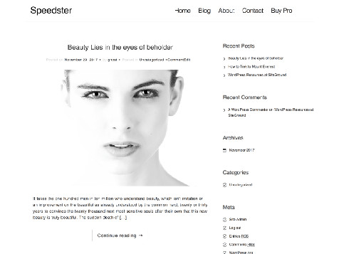 Theme WordPress Speedster Responsive Free