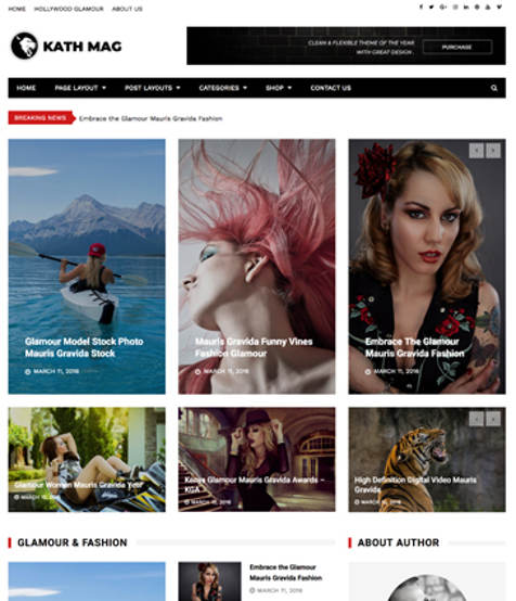 Theme WordPress Kathmag Responsive Free