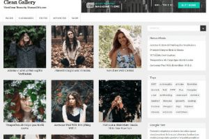 Theme WordPress Clean Gallery Responsive Free