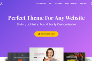Astra-Theme WordPress