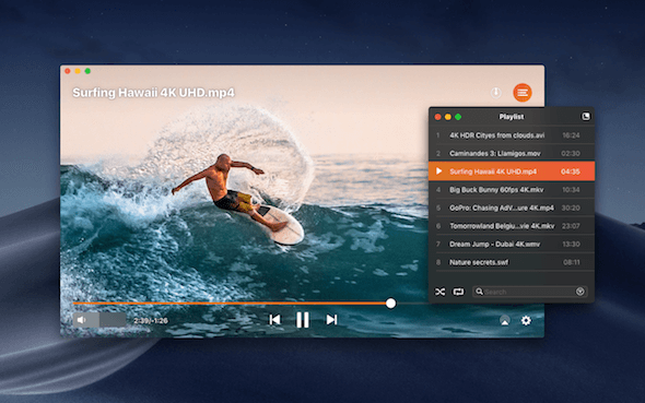 Elmedia Player Playlist Formats Pemutar video Mac OS