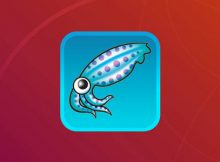 Ubuntu Squid Proxy