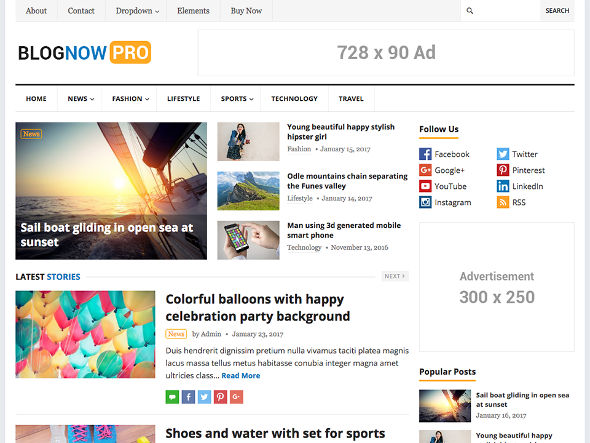 blognow pro WordPress theme