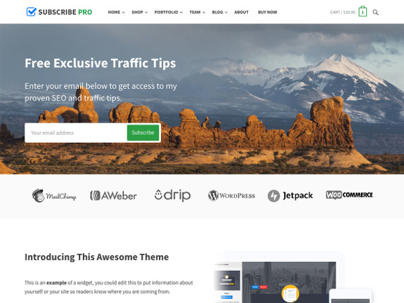 subscribe pro WordPress Theme